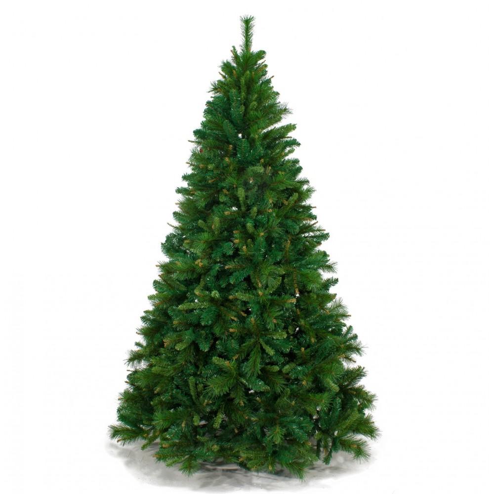 Foto Di Natale Albero.Albero Di Natale Kentucky 240 Cm Abete Ecologico 47514 Ivostore