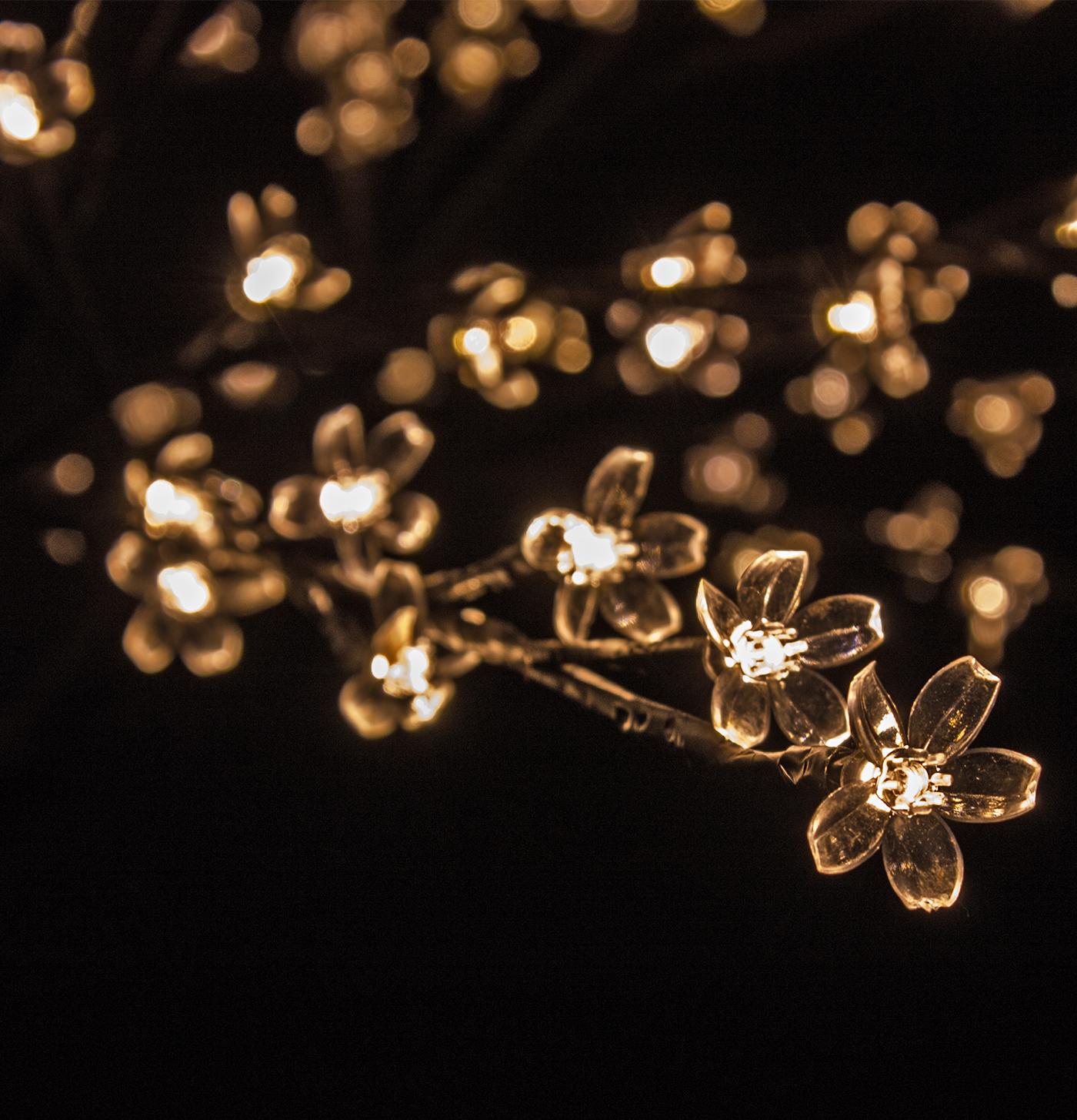 luci-natalizie-fiori-luminosi.jpg